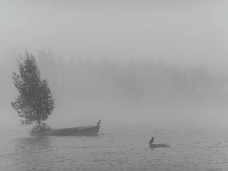 lbmediart_norvegia_20140066